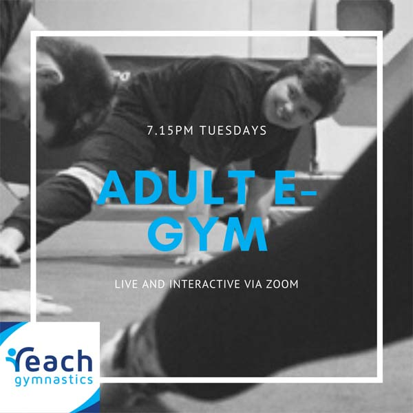 adult e-gym classes in Melbourne with Reach Gymnastics